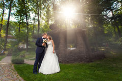 Kissing couple near pavillion in sunlight. Kissing wedding couple near wooden pavillion in sunlight Stock Image