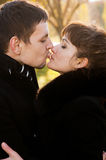 Kissing couple in the Park Royalty Free Stock Photography