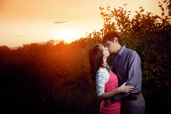 Kissing couple in sunset Stock Images
