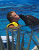 Kissing a Dolphin Royalty Free Stock Photography
