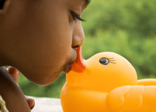 Kissing Ducky Stock Photos