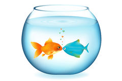 Kissing Fishes. Vector Stock Photo