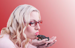 Kissing a frog Stock Photography