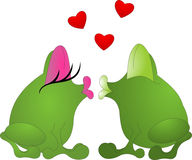 Kissing frogs Stock Image