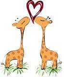 Kissing giraffes heart Royalty Free Stock Image