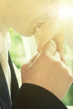 Kissing hand of bride Royalty Free Stock Image