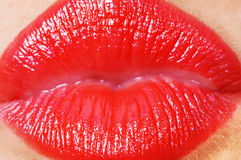Kissing lips Stock Images