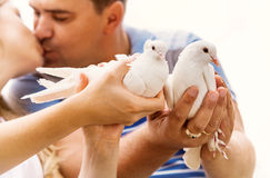 Kissing love couple with pare of white doves Royalty Free Stock Photography