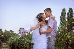 Kissing Royalty Free Stock Photography