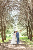 Kissing married couple on sunny alley of trees Royalty Free Stock Photography