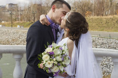 Kissing newlyweds Royalty Free Stock Image