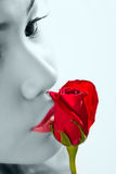 Kissing a red rose Royalty Free Stock Photos