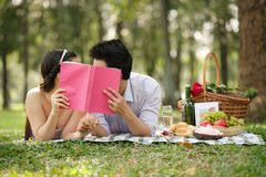 Kissing on the romantic picnic Stock Photos