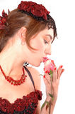 Kissing the rose. Woman kissing the red rose. Isolated background Stock Image