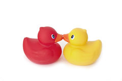 Kissing rubber ducky's Stock Image