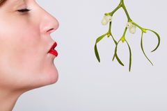 Kissing under the mistletoe Stock Images