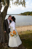 Kissing under tree Royalty Free Stock Images