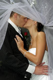 Kissing Veil Stock Photography