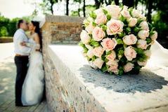 Kissing wedding couple Stock Images