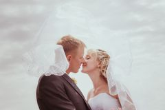 Kissing wedding couple in high grass Stock Images