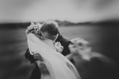 Kissing wedding couple in high grass Stock Image