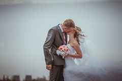 Kissing wedding couple in high grass Royalty Free Stock Image