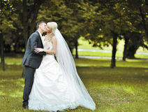Kissing wedding couple in a park Royalty Free Stock Image