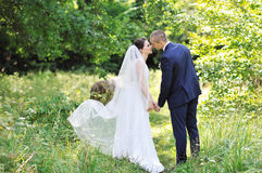 Kissing wedding couple in a park. Bride and groom Royalty Free Stock Images