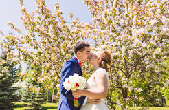 Kissing wedding couple in spring nature Royalty Free Stock Image