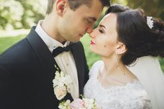 Kissing wedding couple in spring nature close-up portrait.  Royalty Free Stock Photos