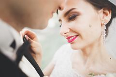 Kissing wedding couple in spring nature close-up portrait.  Royalty Free Stock Image