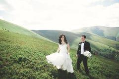 Kissing wedding couple staying over beautiful landscape Stock Photo