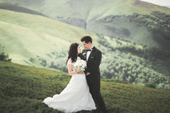 Kissing wedding couple staying over beautiful landscape Royalty Free Stock Photos