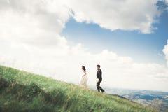 Kissing wedding couple staying over beautiful landscape Stock Photos