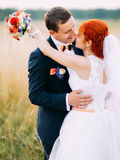 Kissing on wheat field at sunny day. Beautiful redhair bride with handsome groom enjoy the honeymoon Stock Image