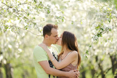 Kissing Young Couple Royalty Free Stock Photography