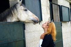 Kisssing horse royalty free stock images