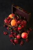 Kist voor decoratie met vruchten en bessen Stock Foto