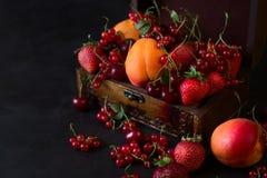 Kist voor decoratie met vruchten en bessen Stock Fotografie