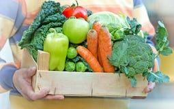 Kiste voll neues biologisches Lebensmittel Stockbild