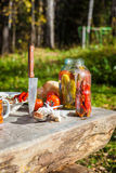 Kiszeni i świezi warzywa na stole Fotografia Royalty Free