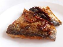 Kiszona rybia karmowa konserwacja Obrazy Stock