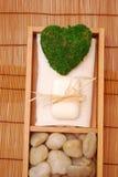 Kit de STATION THERMALE pour la santé Image stock