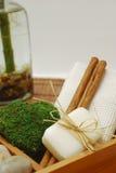 Kit della STAZIONE TERMALE per il wellness o distendersi Fotografie Stock Libere da Diritti