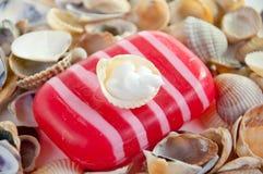 Kit, jabón y shelles del BALNEARIO Imagen de archivo libre de regalías