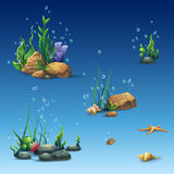 Kit Of The Underwater World With Shell, Seaweed, Starfish, Stones Royalty Free Stock Image
