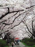 Kitakami, prefectura de Iwate, Japón Foto de archivo