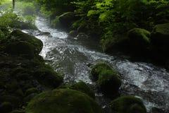 Kitanizawa halny strumień Zdjęcie Stock