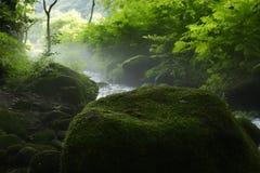 Kitanizawa halny strumień Obrazy Royalty Free