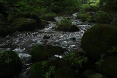 Kitanizawa halny strumień Fotografia Royalty Free